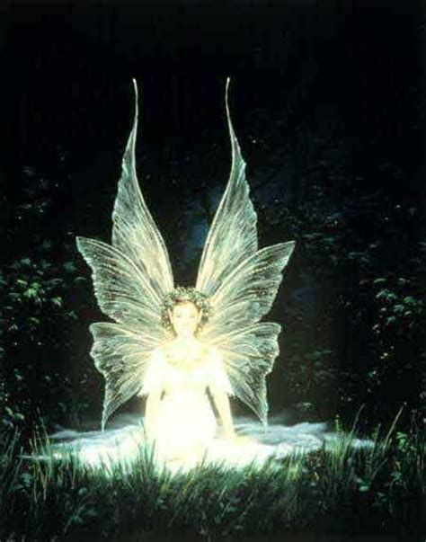 Fairies Light Pictures For Everyone No Trash Fairies And Pixies