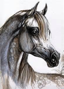 arabian horse painting by angel tarantella