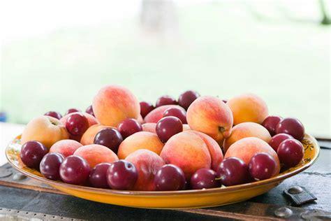 bowl of fruits bowl of fruit
