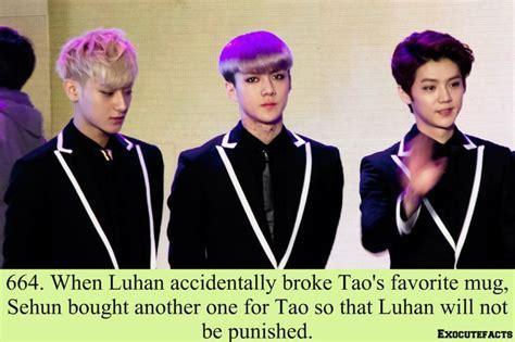 kpop 114 info 114 besten exo facts bilder auf pinterest exo memes