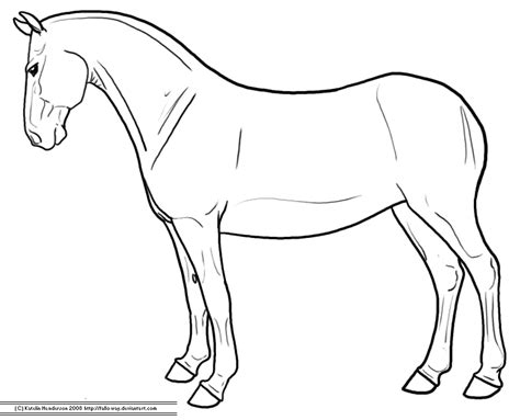 best photos of standing horse outline horse outline