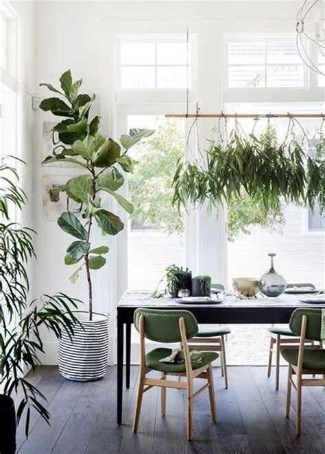 style so simple house plant 2017 interior design style