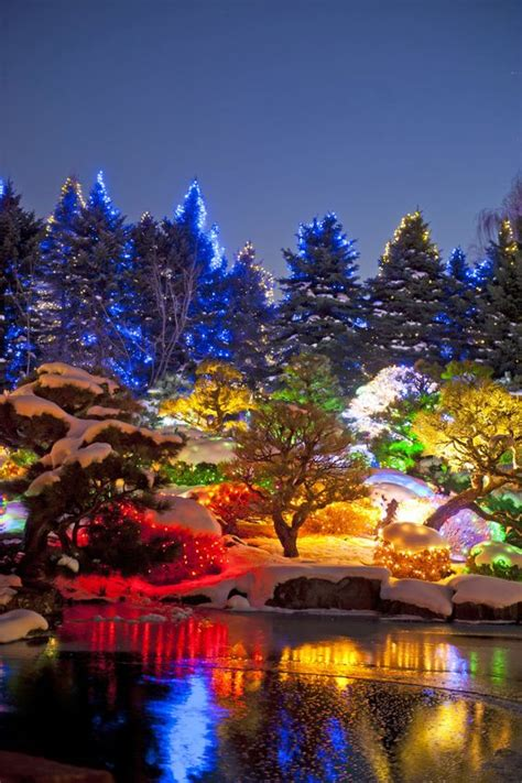 Gardens Blossoms And Cambodia On Pinterest Denver Botanic Garden Lights