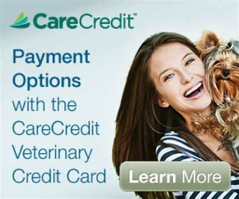 care credit for dogs care credit financing for your pet expenses
