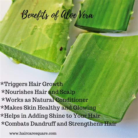 How To Use Hair Gel For Hair by Benefits Of Aloe Vera Juice Or Gel For Hair How To Use