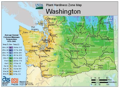 gardening zones washington state washington vegetable planting calendar