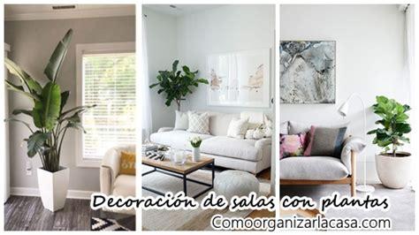 decorar fachadas con plantas 34 ideas para decorar tu sala con plantas decoracion de