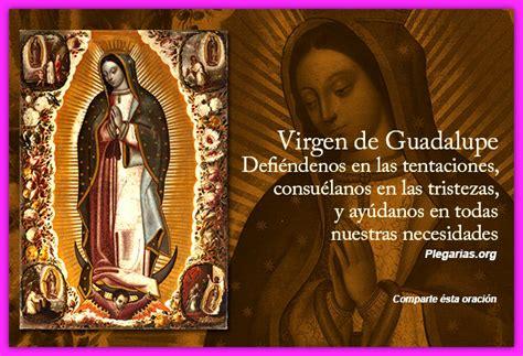 Im 225 Genes De La Virgen De Guadalupe Fotos De La Virgen De | imagenes con frases de la virgen de guadalupe imagenes de