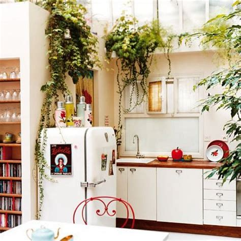 plants in the kitchen 9 ways to decorate awkward space above kitchen wall cabinets