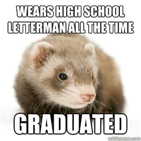 Ferret Meme - the gallery for gt zoidberg meme your jokes are bad