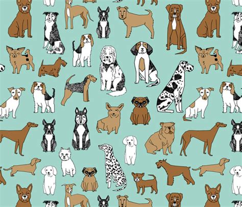 dog color pattern names dogs mint cute pets dog breeds hand drawn illustration