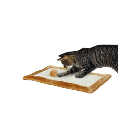 tappeti per palestre tappeto tiragraffi per gatti