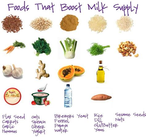 foods for 10 foods for better breast milk supply
