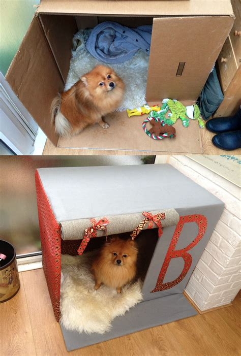 Boxes For Dogs Picture More - made my his own house out of a card board box diy
