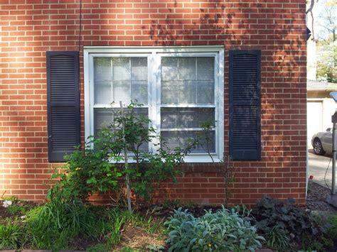 spray painting vinyl shutters and paint plastic shutters reanimators