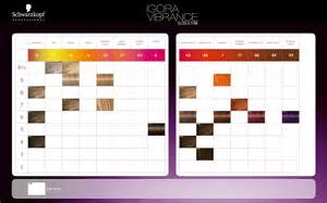 igora royal color chart igora royal color chart car interior design