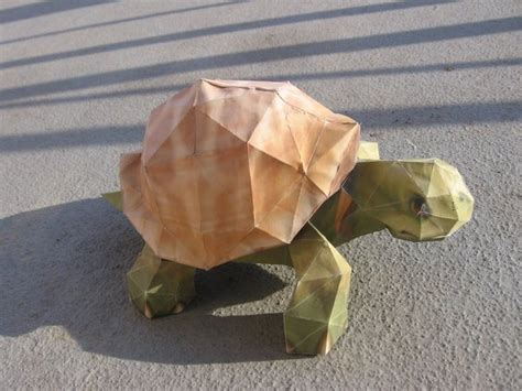 Turtle Papercraft - turtle papercraft by p m f on deviantart