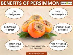 tree tomato fruit benefits benefits of tree tomato fruit home design inspirations