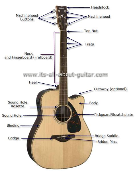 diagram of an acoustic guitar instruments