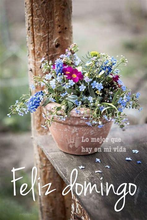 imagenes de feliz domingo vintage 45 im 225 genes lindas con divertidos mensajes para dar la
