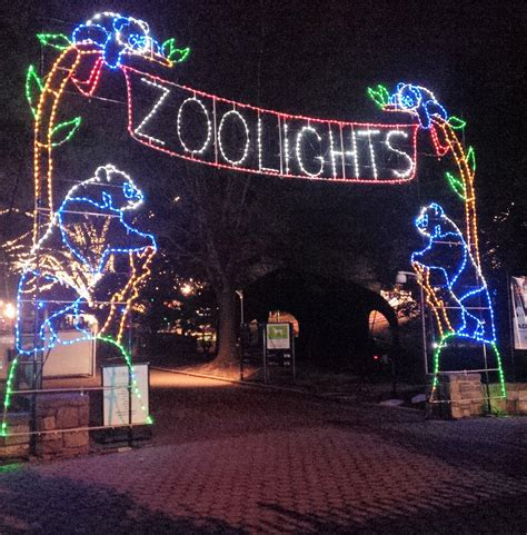 zoo light dc images of dc zoo lights best tree
