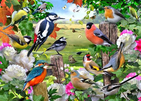 birds   seasons jigsaw  jumbo   pieces