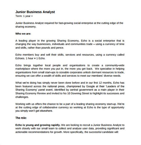 Business Analyst Document Templates sle business analyst resume 8 documents in pdf word