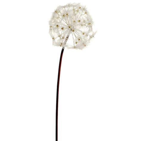 28 quot silk dandelion flower spray cream pack of 6 ebay