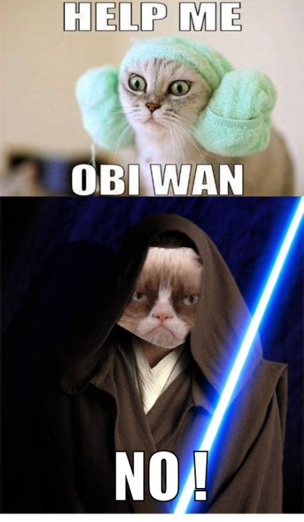 Star Wars Cat Meme - grumpy cat internet meme invades star wars socialeyezer