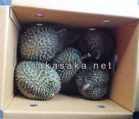Durian 5pcs durian frozen durian monthong durian sakasaka net
