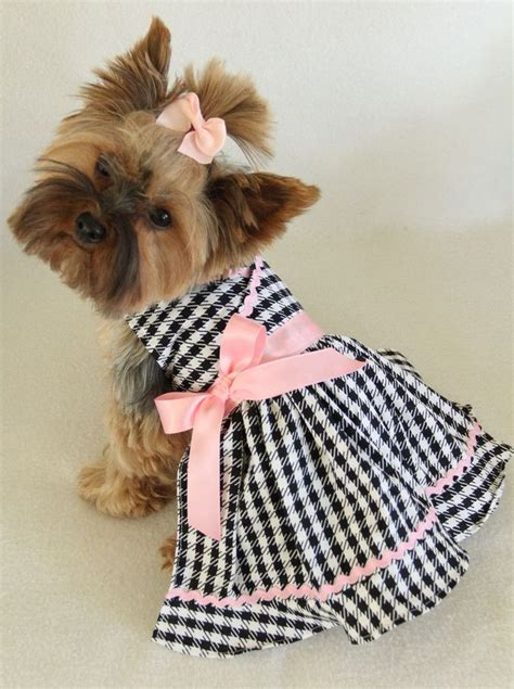 clothes for dogs best 25 ideas on puppy clothes diy clothes for dogs and