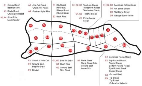 diagram of steak cuts 12 best images about bge resources on