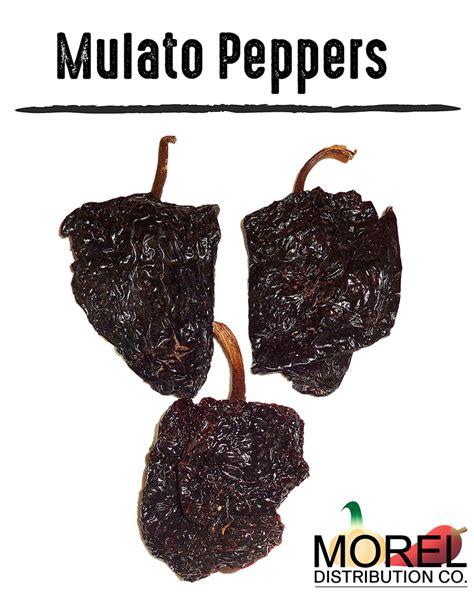 chile color dried mulato ancho pepper chile mulato weights 4 oz