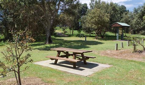 parks with picnic tables near me angourie bay picnic area nsw national parks