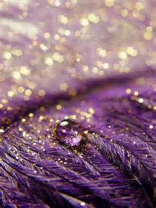 Purple Gold Bedroom - 25 best ideas about purple gold on pinterest purple gold weddings plum and purple painting