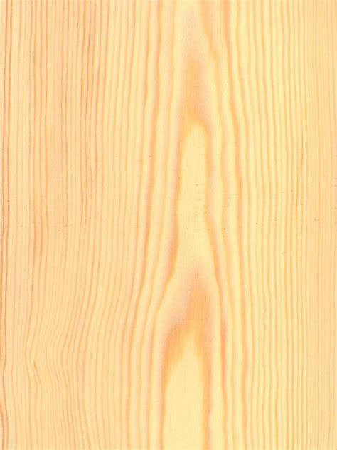 kiefer maserung pine wood related keywords pine wood keywords
