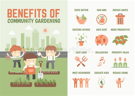 Infographics About Benefits Of Community Gardening Stock Benefits Of Vegetable Gardening