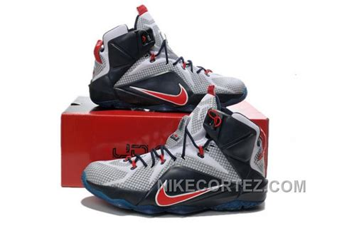 Sepatu Basket Lebron 12 Instinct nike lebron xii gs 12 instinct basketball shoes jcaaw price 86 00 nike cortez nike