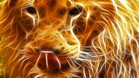 imagenes cool animals cool backgrounds of animals wallpaper cave