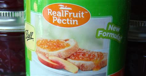 fruit pectin rurification pectin real fruit pectin