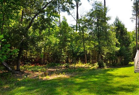 Backyard View | backyard view in brandon woods