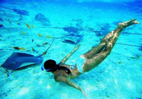 Koh Tao Koh Nang Yuan Snorkeling Tour By Speed Boat Anak Anak koh tao koh nang yuan snorkeling by speed boat samui tour