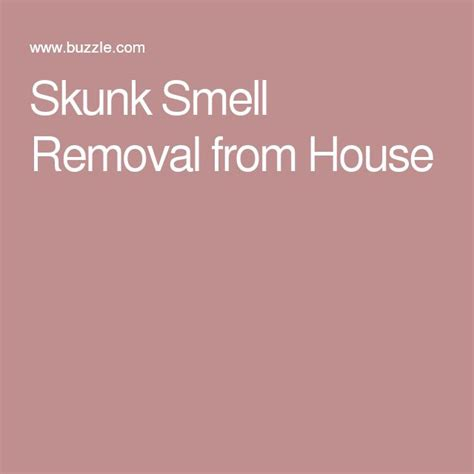 best way to remove dog smell from house best 25 skunk smell ideas on pinterest dog skunk skunk spray remedy and dog skunk bath