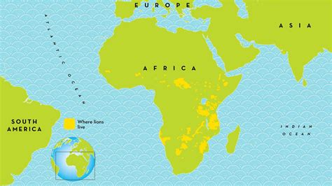 map live where do lions live map www pixshark images