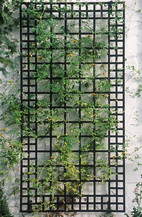 poundbury trellis order wall trellis classic garden