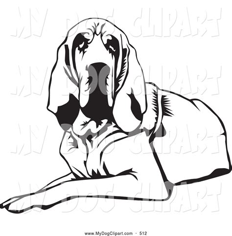 coloring pages of bloodhounds royalty free blood hound stock dog designs