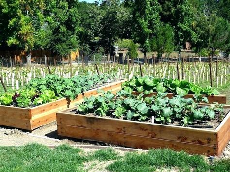 How To Make A Vegetable Garden In Your Backyard A Vegetable Garden Bed Image Of Raised Bed Garden