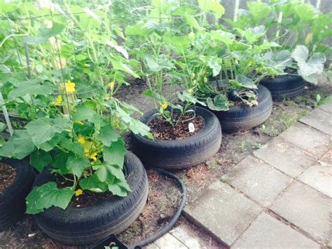 Tires As Planters by Tires As Planters Tires And Re Used