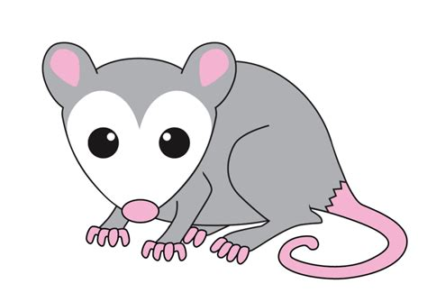 Opossum Clipart Possum Clipart Possum Clip Images Hdclipartall
