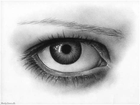 A Drawing Of An Eye by Amazing Pencil Draw From Web Madlifenotes
